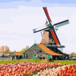 Zondag 24 november Hollandse MuziekMiddag